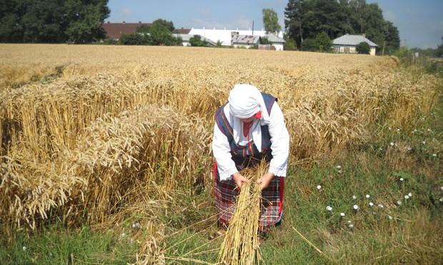 Monsanto договаря с  научно поделение за семената, казва Ройтерс.