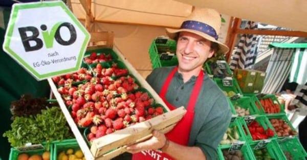 Мимикрия: Фермерските пазари – атракция и нищо повече