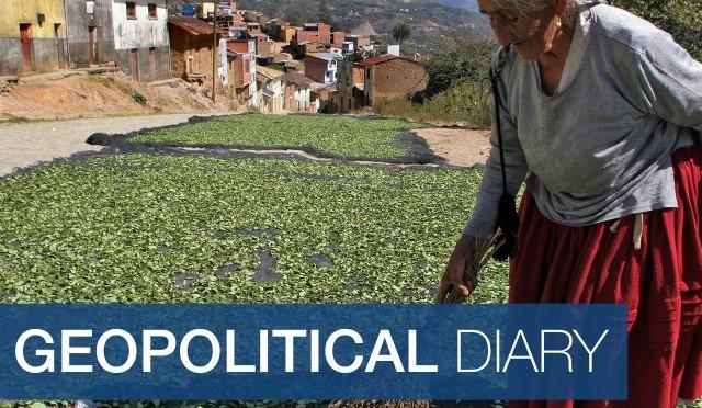Растяща толерантност към боливийската кока